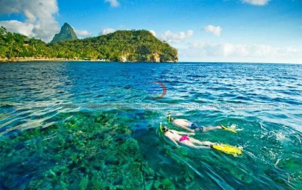 Mách bạn cách lựa chọn tour Phú Quốc giá rẻ từ các công ty uy tín
