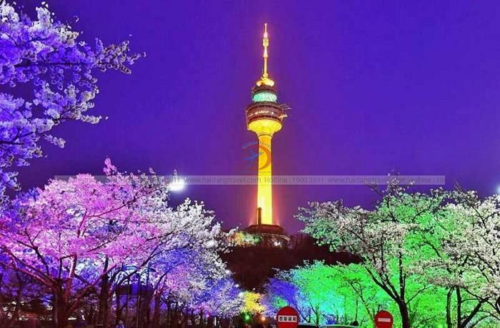 Tìm hiểu về tháp Namsan – Điểm du lịch lý tưởng của Hàn Quốc