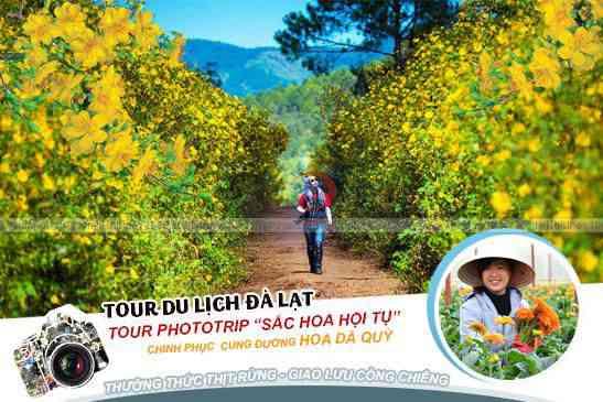Tour Đà Lạt Phototrip Sắc Hoa Hội Tụ tết âm lịch 3N3Đ