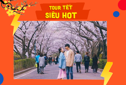 Tour Hàn Quốc Tết Âm Lịch Đảo Jeju – Love Land – Seoul – Nami – Running Man