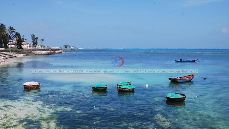 Tour Lý Sơn giá rẻ - trải nghiệm khó quên trên hòn đảo mộng mơ