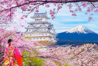 Tour Nhật Bản 2018 Tokyo, Hakone, Fuji, Narita