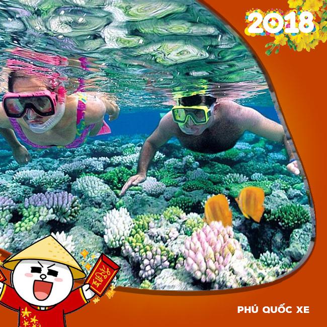 Tour Phú Quốc, Khám Phá Đảo Ngọc Bằng Xe Giường Nằm Tết Âm Lịch 2018
