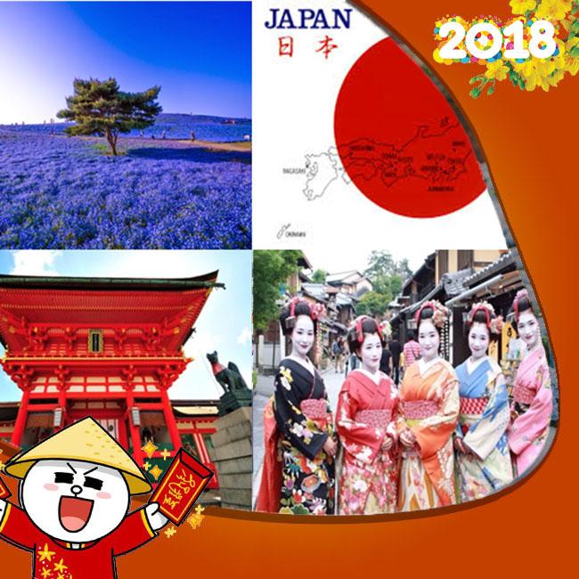 Tour Tokyo Yamanashi Kyoto Osaka Tết Âm Lịch VIETNAM AIRLINES 6N6Đ