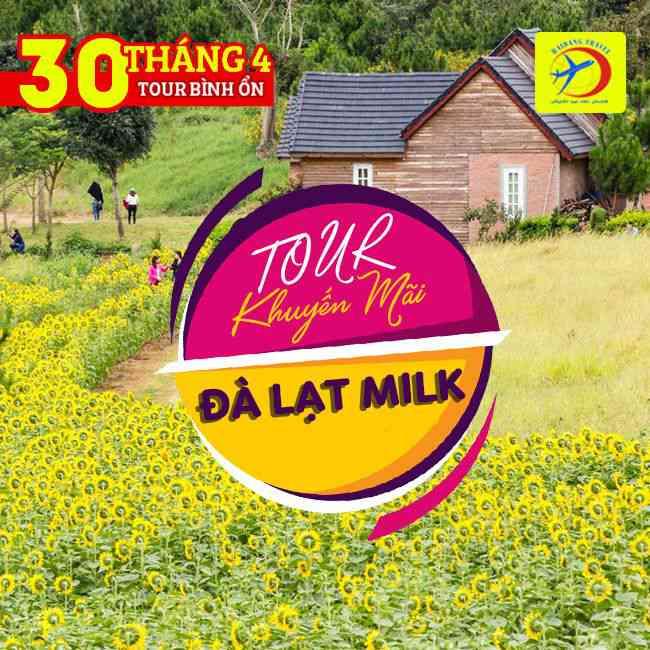 Tour Đà Lạt Milk, 30/4, Khám Phá Vườn Hoa Lavender, Cẩm Tú Cầu, Cổng Trời
