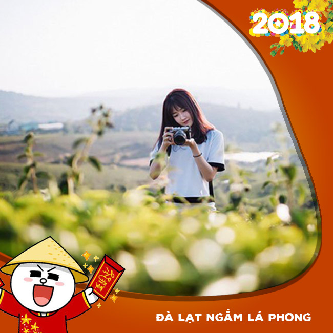 Tour Đà Lạt, Ngắm Lá Phong, BBQ Hàn Quốc Tết Âm Lịch 2018 3N3Đ