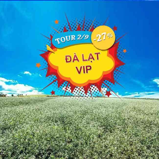 Tour Đà Lạt VIP,  Linh Quy Pháp Ấn, Hồ Tuyền Lâm, Lễ 2 Tháng 9 Thưởng Thức Buffte 3N3Đ