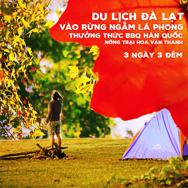 Tour Đà Lạt, Vào Rừng Ngắm Lá Phong, BBQ Hàn Quốc, Đồi Chè Cầu Đất 3N3Đ