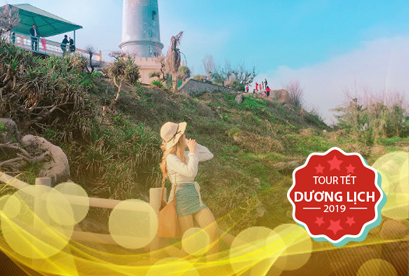 Tour Điệp Sơn Phú Yên Tết Dương Lịch, Con Đường Dưới Biển Độc Đáo, Mũi Điện