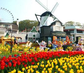 Tour du lịch Hàn Quốc giá rẻ chỉ có tại Hải Đăng