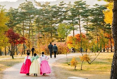Hàn Quốc 2020 Mùa Hoa Anh Đào: Seoul – Nami – Everland chuẩn 5*