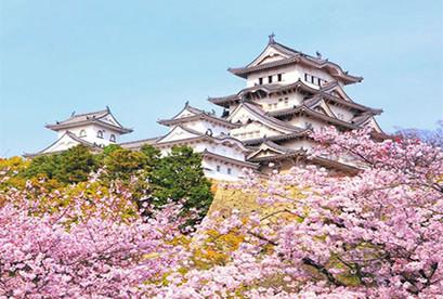 Tour Nhật Bản 2019 Osaka – Nara – Kyoto