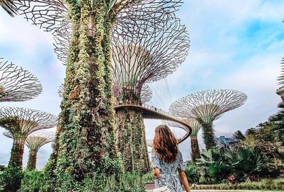 Tour Singapore, công viên sư tử, Sentosa, Orchard Road, Garden By The Bay SGN-SIG VJ811