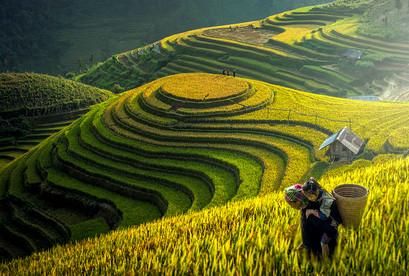 Tour Hà Nội Sapa Hạ Long Yên Tử, Chinh phục đỉnh Fansipan