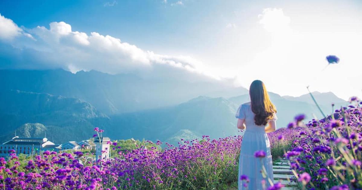 HOÀNG SU PHÌ - HÀ GIANG - SI MA CAI - XÍN MẦN - BẮC HÀ - SAPA - LÀO CAI 4N3Đ